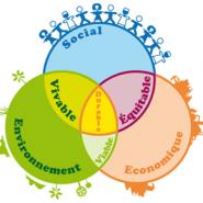 RSE : 20 propositions pour renforcer la «responsabilité globale» des organisations !